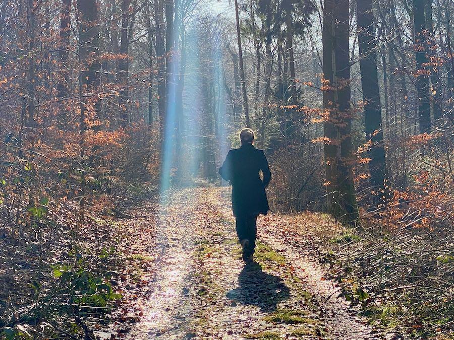 trilha - viagem sustentável