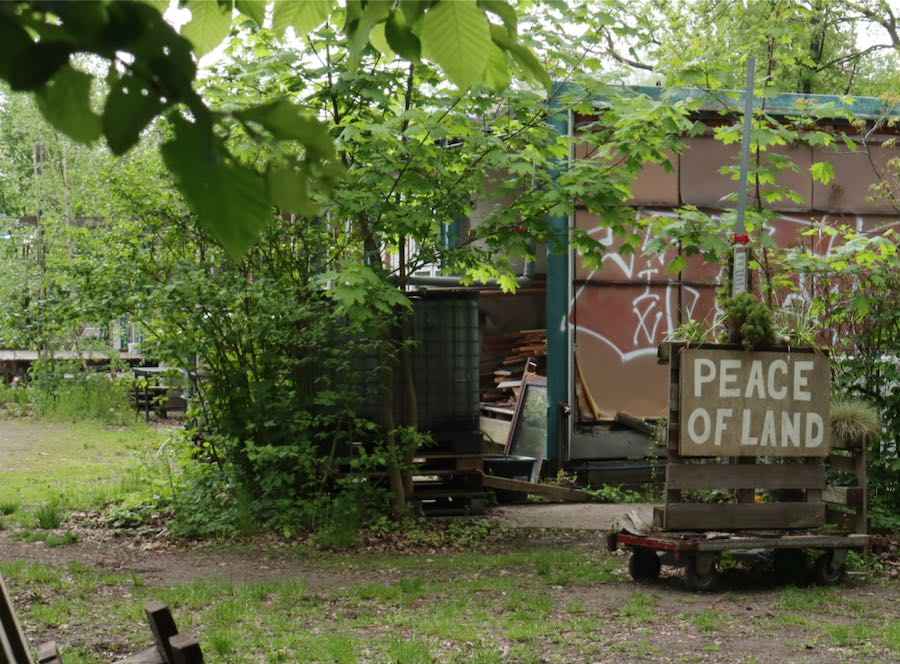 permacultura urbana